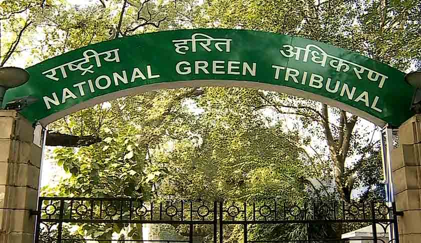 NGT asks NDMC to keep constant vigil in Azadp